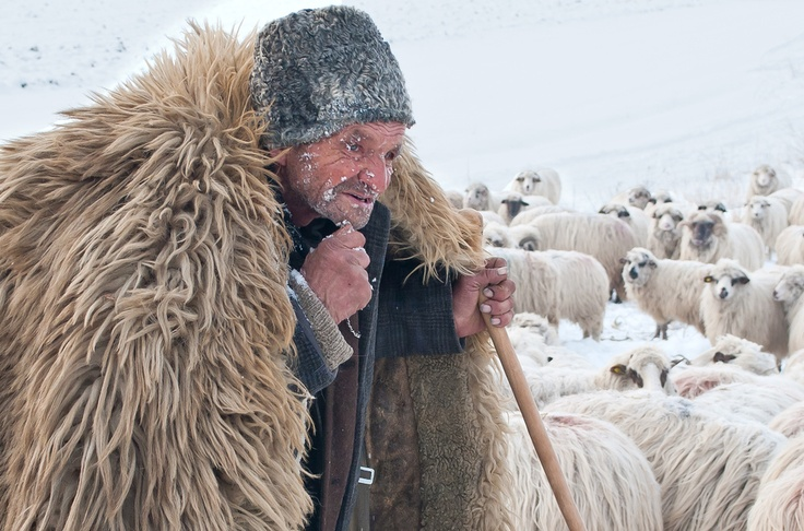 As they appear in many countries, the typical shepherd from Stremt, Romania by Cimil Cosmin, via 500px
