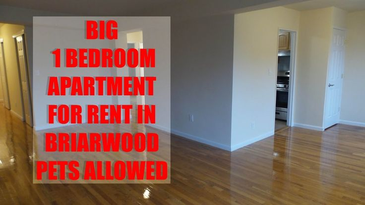 Pet friendly & Huge 1 bedroom apartment for rent in Briarwood, Queens, NYC