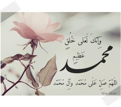 عليك أفضل الصلاة والسلام يا رسول الله