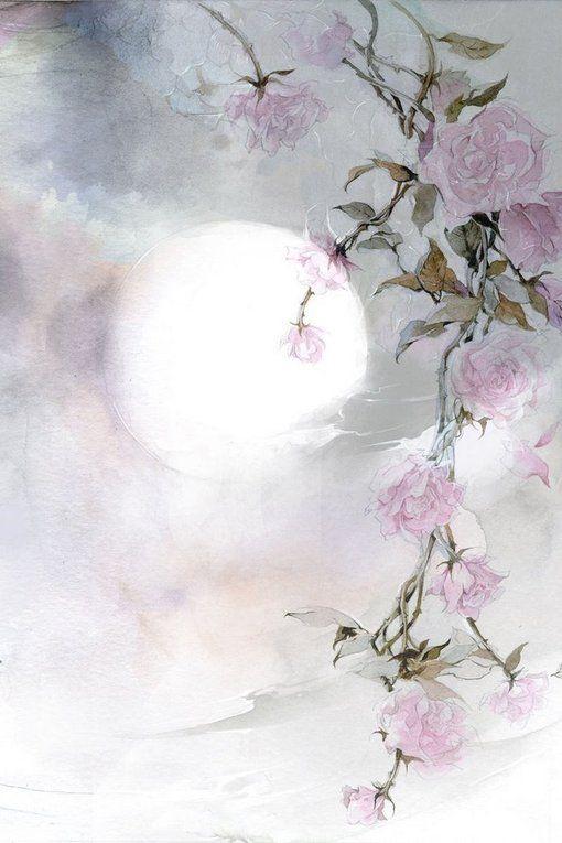 Moon Flowers ~ Night Blooming Flowers<3