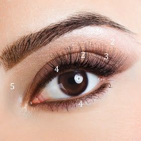 Lady'sBlog: Ease your makeup routine with these simple eye shadow steps.