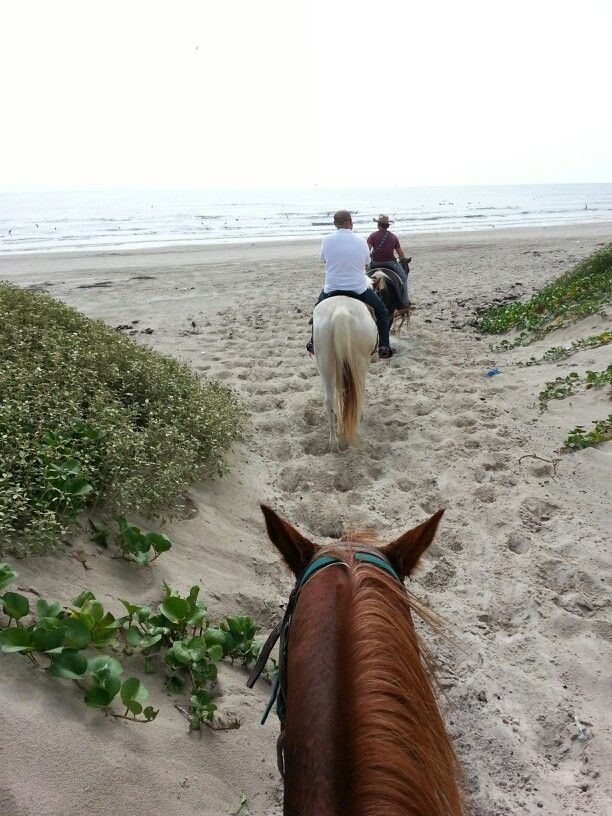 Mustang Riding Stables,  Mustang Island,  Corpus Christi, Texas