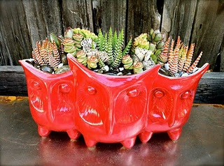 3 Owl Planter (comes in more colors) there is also a vase version of this too!