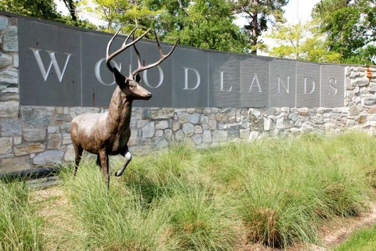 36 best The Woodlands tx images on Pinterest | The woodlands texas ...