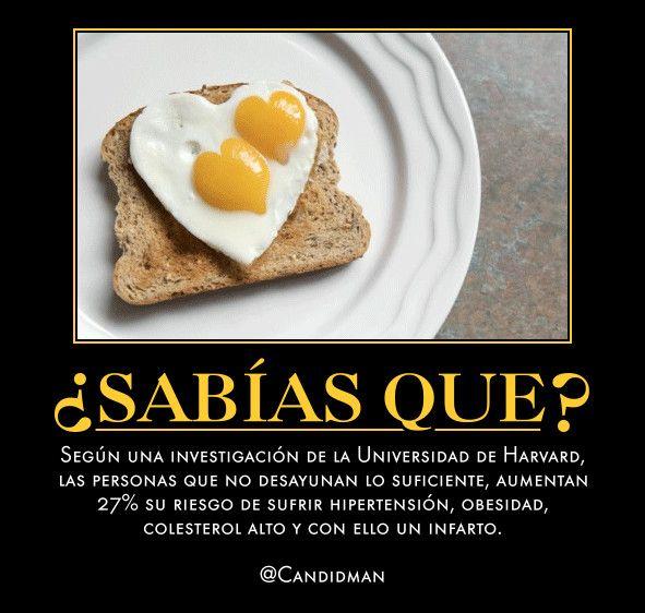 SabiasQue Según una investigación de la Universidad de Harvard, las personas que no desayunan lo suficiente, aumentan 27% su riesgo de sufrir Hipertension, Obesidad, Colesterol alto y con ello un infarto.