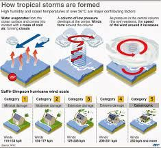 Best 25+ How are hurricanes formed ideas on Pinterest | How do ...
