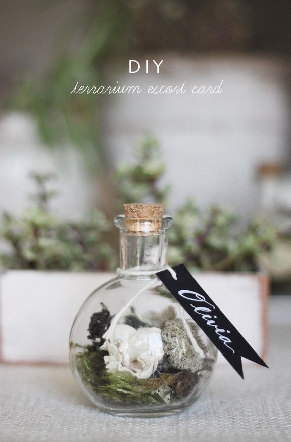 Kelli Murray's Blog | DIY TERRARIUM ESCORT CARDS Kelli Murray