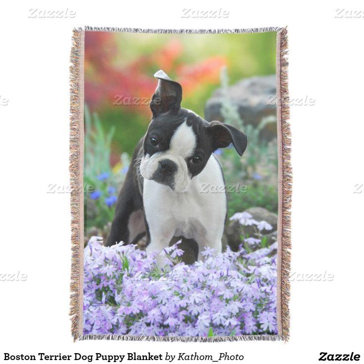 Boston Terrier Dog Puppy Blanket Throw