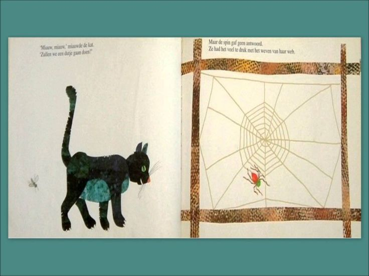 De spin die het te druk had - Eric Carle - voorgelezen