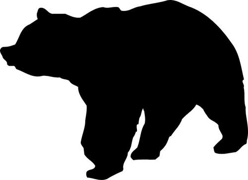 114 Best Images About Bears On Pinterest American Black
