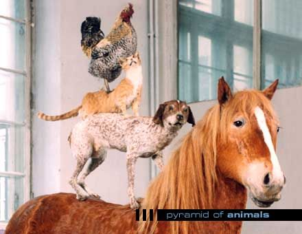 KATARZYNA KOZYRA Pyramid of Animals, 1993. polish