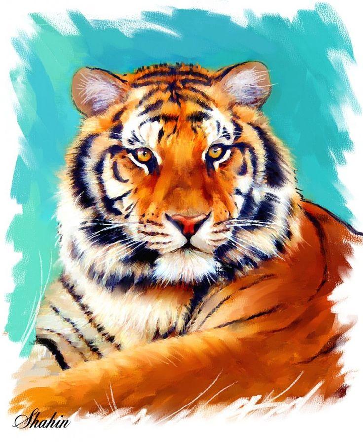 открытки животные тигр сильно