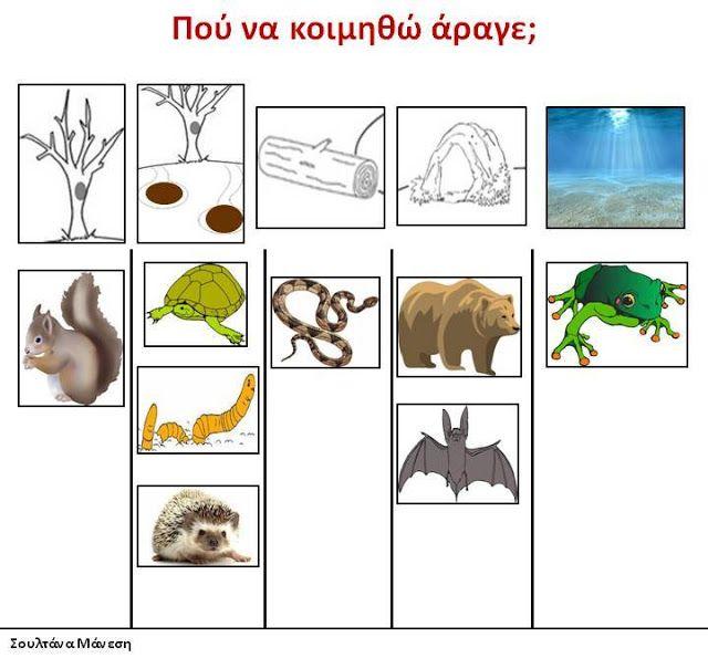 Δραστηριότητες, παιδαγωγικό και εποπτικό υλικό για το Νηπιαγωγείο: Τα ζώα στο Νηπιαγωγείο: Ζώα σε χειμερία νάρκη