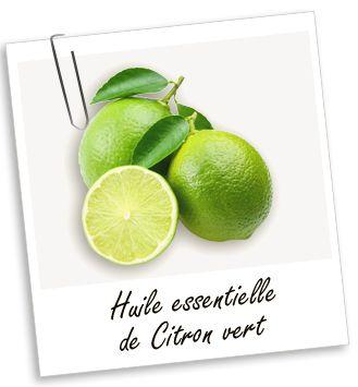 Huile essentielle Citron vert : Cette huile ressource, rééquilibre et recentre les énergies vitales : elle permet de lutter efficacement contre le stress, la dépression et les tensions nerveuses. Stimulante, elle est connue pour faciliter la circulation du sang.