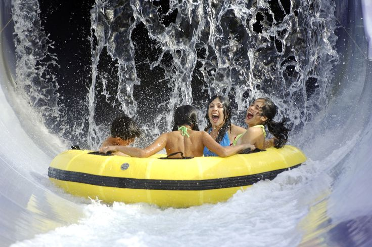 #Adventure #Island (6 miles) Cool off from the hot Florida sun at this 30-acre island full of water slides, pools and kid's attractions. Phone: +1 (888) 800-5447