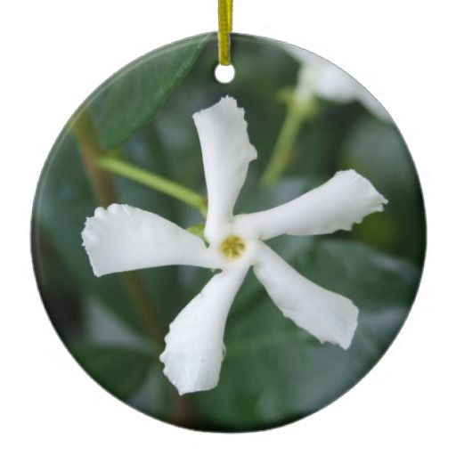 Star Jasmine Ornament