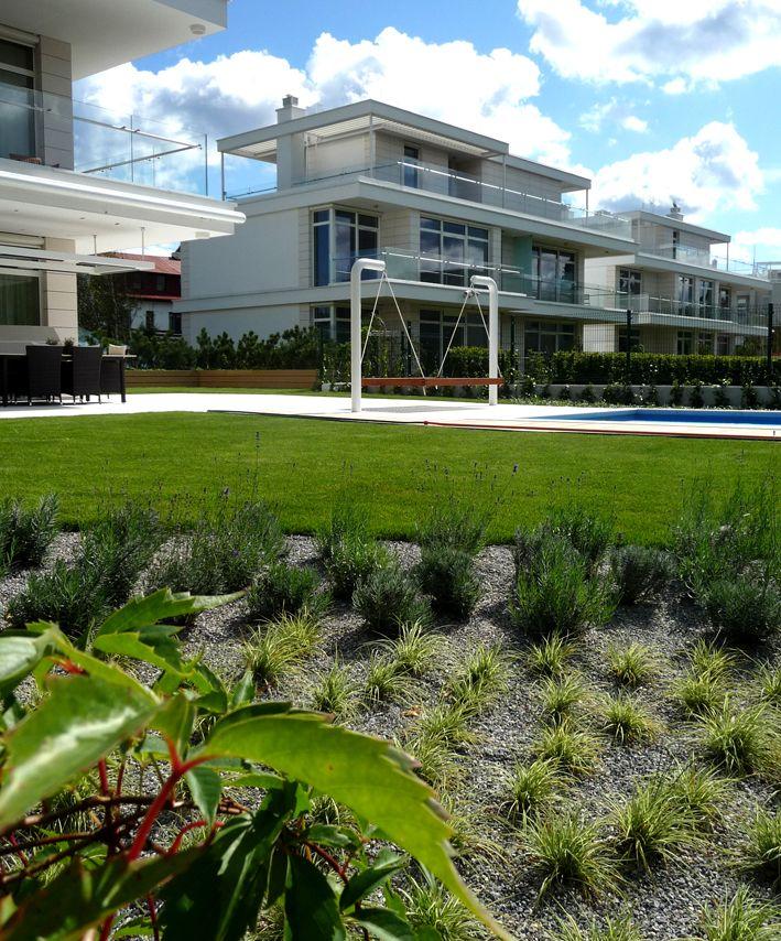 Trawnik przy basenie w ogrodzie.