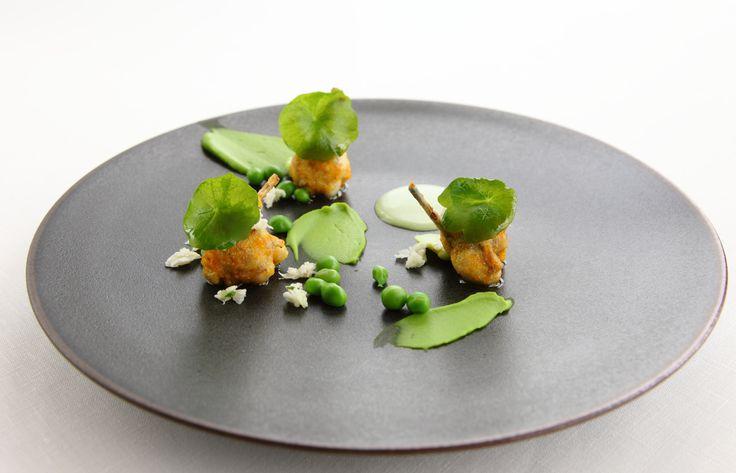 Restaurant ESqUISSE(レストラン エスキス)   MENU   WINE   PHOTO ARCHIVES GALLERY   フォト アーカイブ ギャラリー