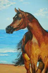 Arabian horse, 150x100 cm, oil on canvas