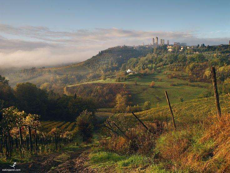 #196. San Gimignano. Tuscany. Italy. - http://www.oskinpavel.com/