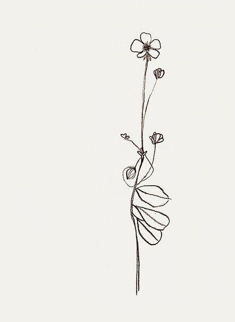 'buttercup' by bernadette pascua...