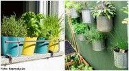 Livro que ensina a criar horta em pequenos espaços é destaque na 23ª Bienal do Livro de SP #cursoscpt
