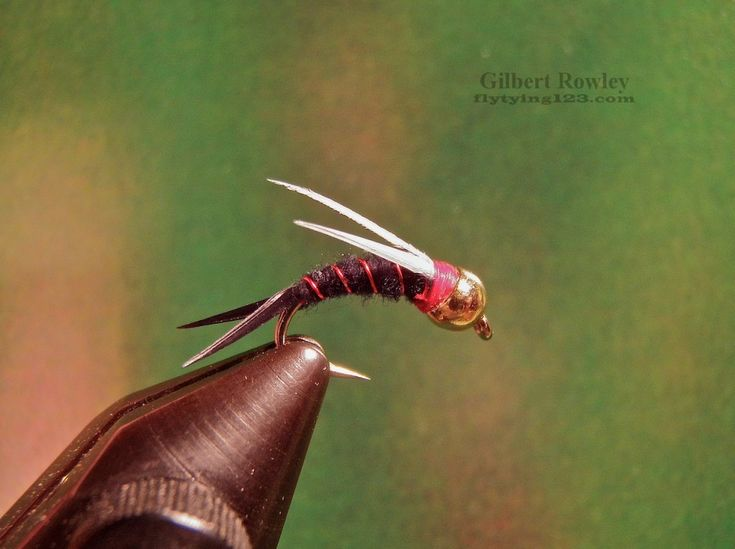 48 best images about nymph flies on pinterest copper for Fly fishing nymphs
