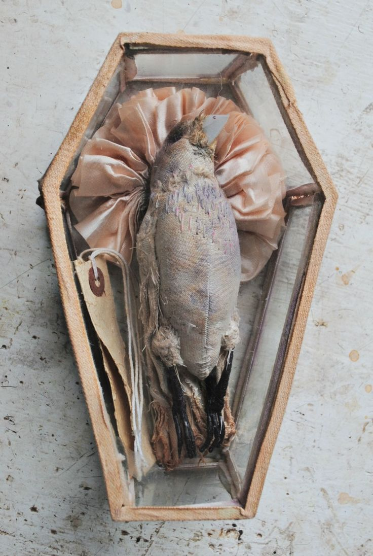 Textile Dead Bird In Glass Coffin By Mister Finch