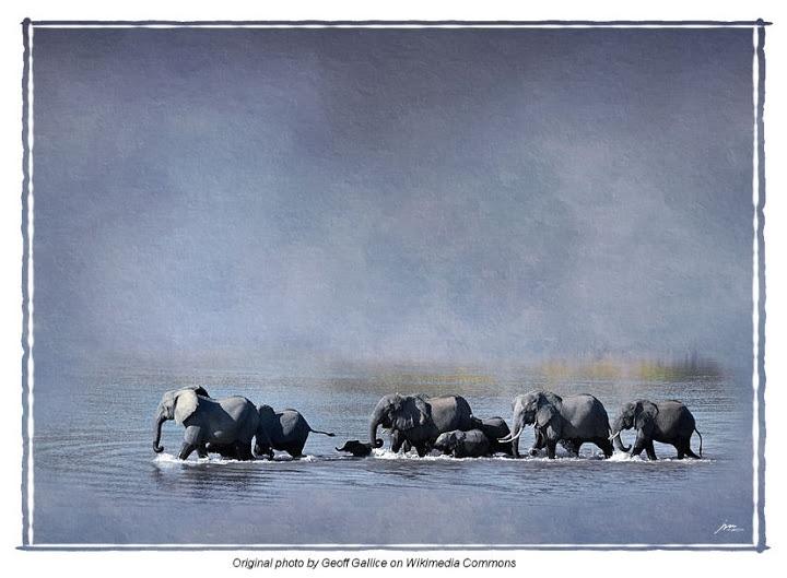 Gallery 2012 - 115199534356181106698 - Picasa Web Albums