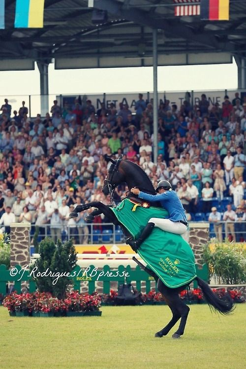 """""""Oh yeah, I won! LOOK AT ME!"""" Codex One, Christian Ahlmann's horse, was very excited during the awards ceremony in Aachen!"""