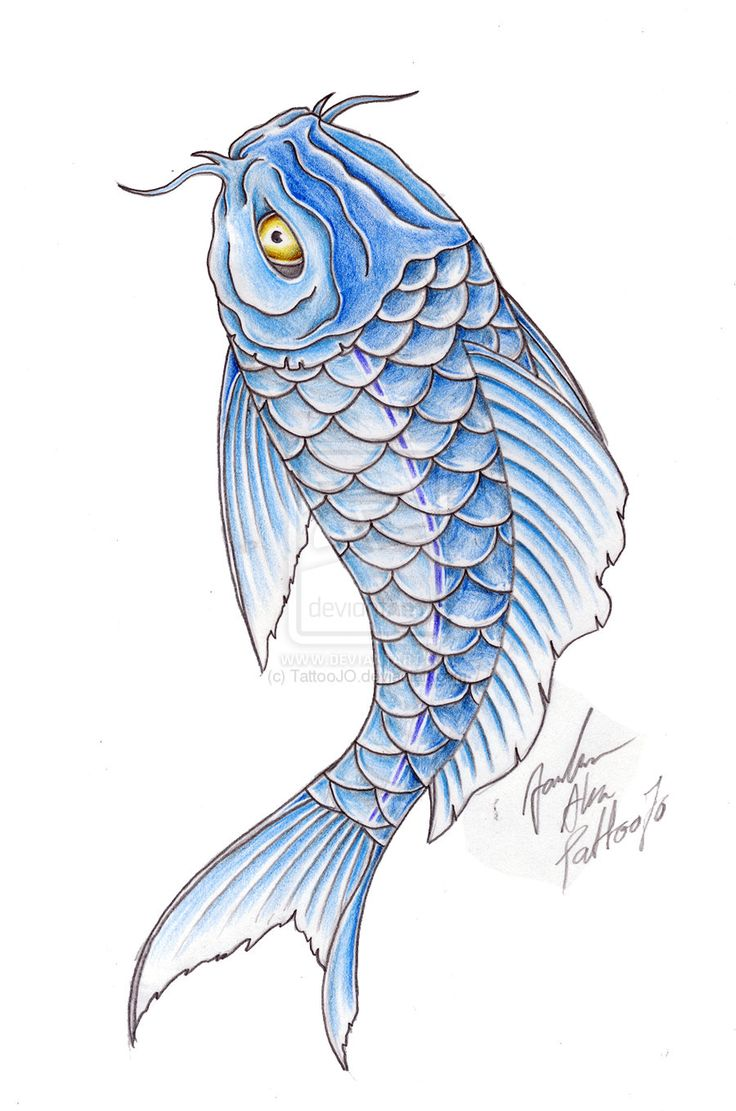 38 best blue koi fish tattoo designs images on pinterest for Green koi fish