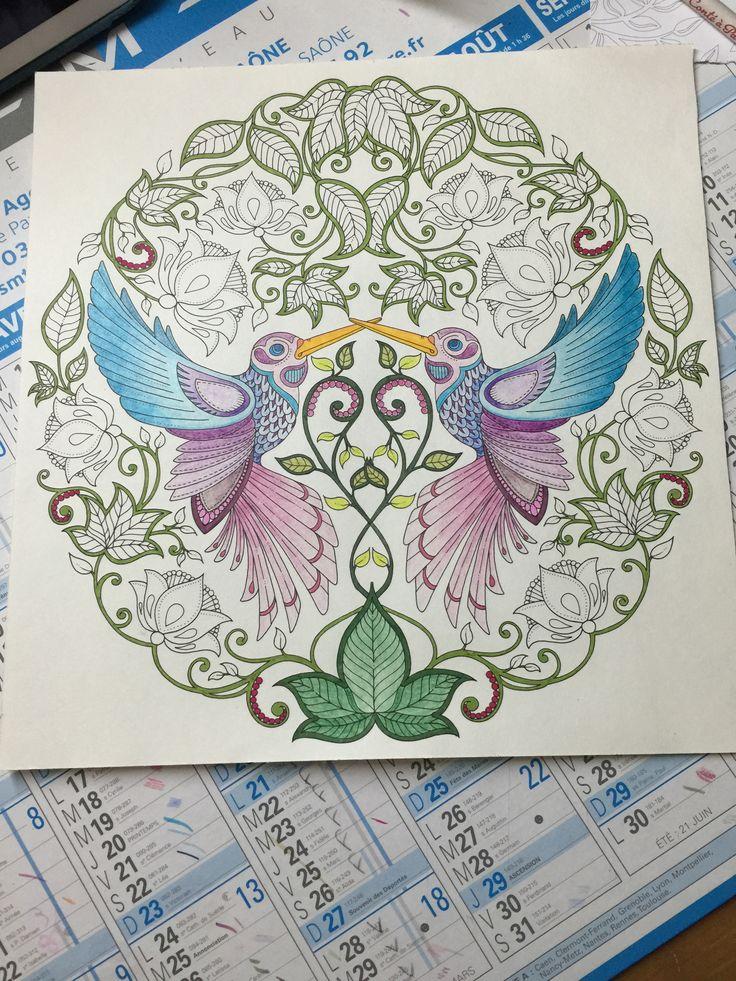 Mes oiseaux de jardin secret coloriage ii - Mon jardin secret coloriage ...