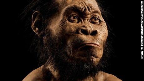 Homo naledi, a new species of human ancestor found in South Africa, may have buried its own dead -- a discovery that could change our view of human evolution.