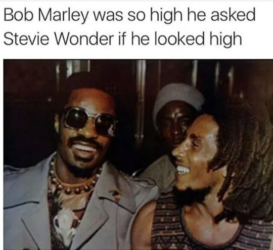 bob marley, was so high he asked,stevie wonder,if he looked high ...