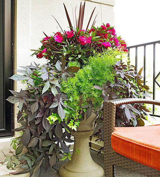 Container Garden Design Basics