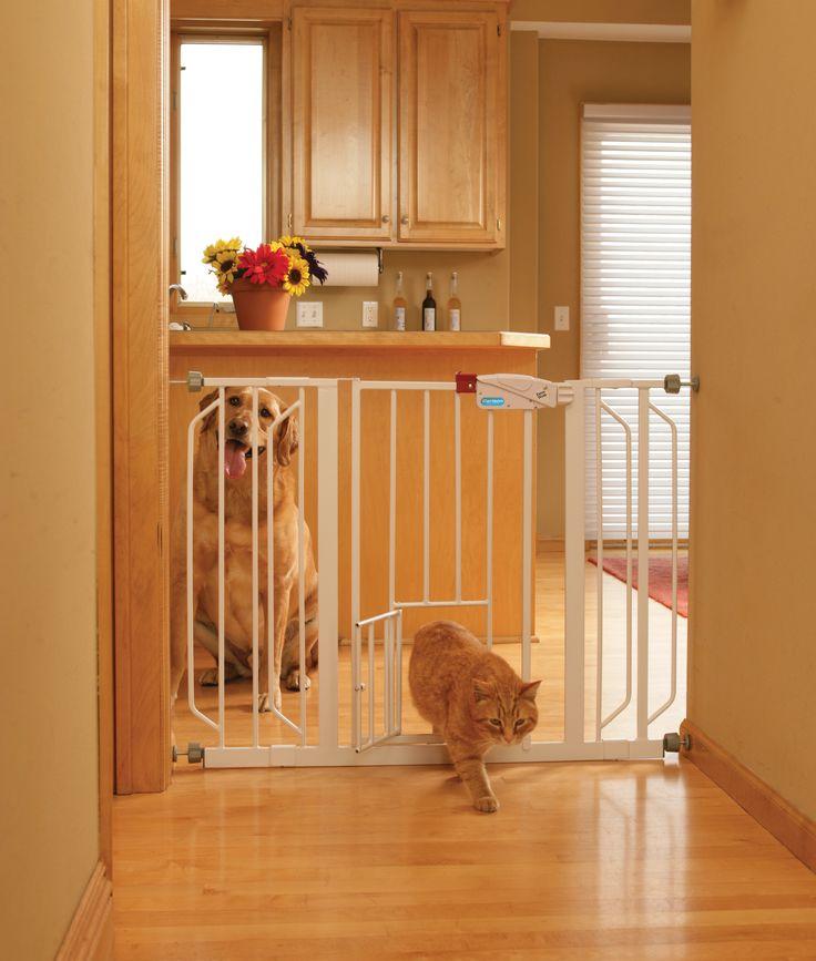 109 best pins for pets images on pinterest cat condo for Dog door menards
