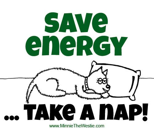 #takenap #saveenergy