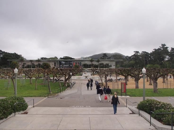 カリフォルニア・アカデミー・オブ・サイエンス/サンフランシスコ。レンゾ・ピアノ。デ・ヤングの向かい側に丁度位置してる。2008年開館と新しい。中は植物園と水族館とプラネタリウムがごっちゃになった施設。