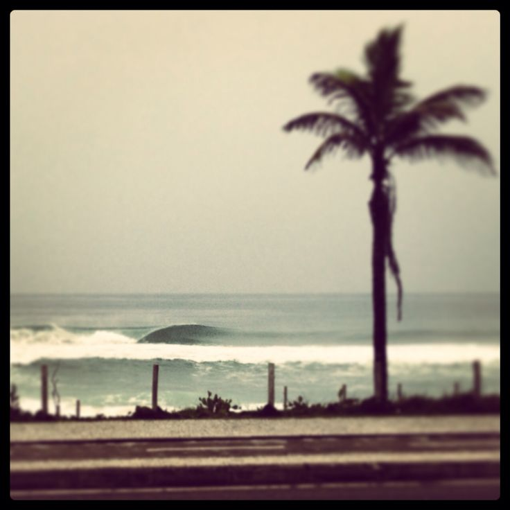 Morning Surf...