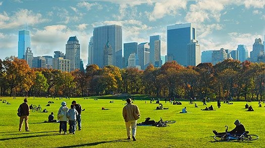 New York City: 10 Things to Do — 1. Central Park - TIME