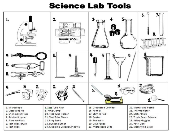 Worksheets Biology Laboratory Equipment 25 best ideas about chemistry lab equipment on pinterest science safety labs physical life tools lab