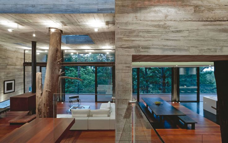 I showed a home recently to clients with an actual tree growing through the roof of the home, just like this one. Very odd...... Jay Agoado - Mercer Island, WA Real Estate