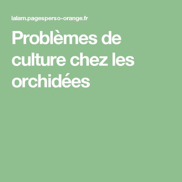 Problèmes de culture chez les orchidées
