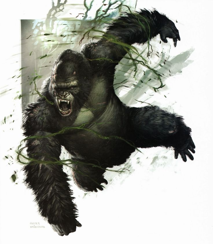 Image result for the world of kong a natural history of skull island