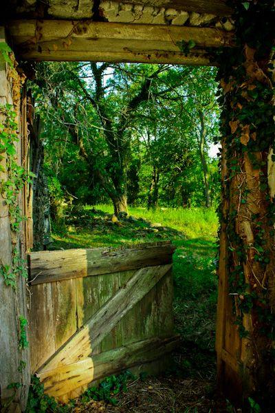 2554 Best Windows Doors Gates Paths Images On