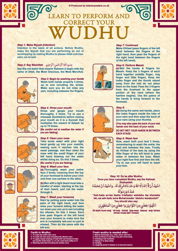 Basics to perform wudhu (ablution) correctly.