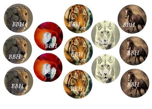 Wild animals bottle cap images by blackberryholler on etsy for Depot outlet bochum