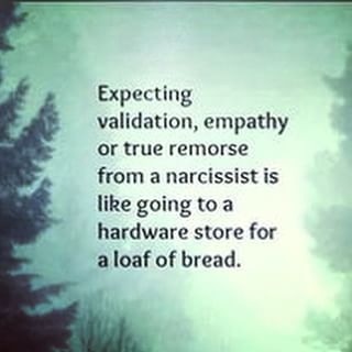 Expecting validation, empathy or true remorse from a narcissist is like going to a hardware store for a loaf of bread