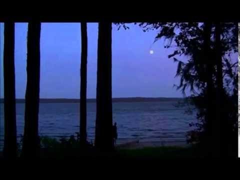 Dark Moon - Elvis Presley (Cover) Lyrics