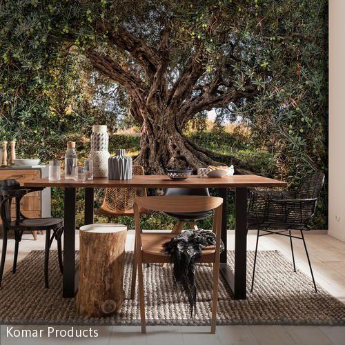 Raum für genussvolle Momente: Der Olivenbaum mit seinen graugrün-silbrig schimmernden Blättern verbreitet ein mediterranes Flair.
